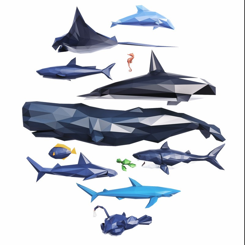 海洋鱼类生物块面结构Low Poly