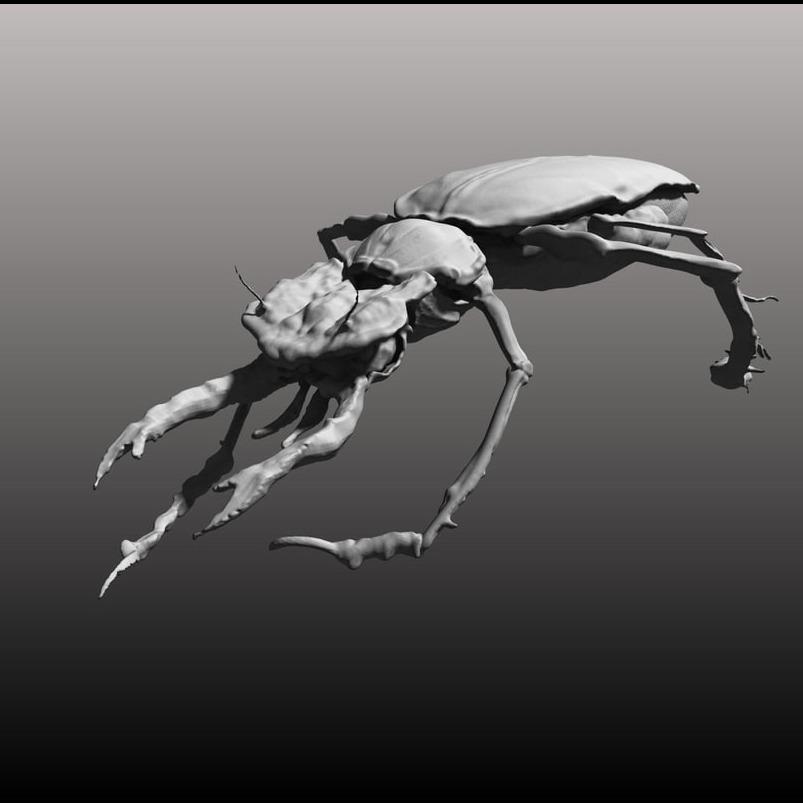 3D模型-甲虫